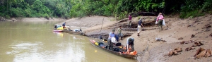 custom trips in the amazon rainforest, adventure travel, south america, amazon camping