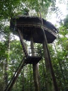 Tanimboca lodge, custom trips in Colombia, South America, Adventure travel