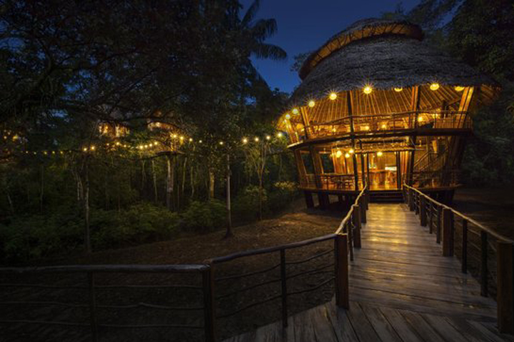 TREE-HOUSE LODGE, Amazon, South America